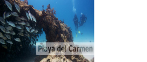 Scuba Diving Playa del Carmen