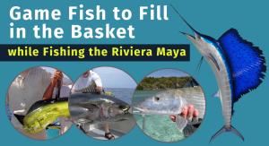 yacht fishing Riviera Maya